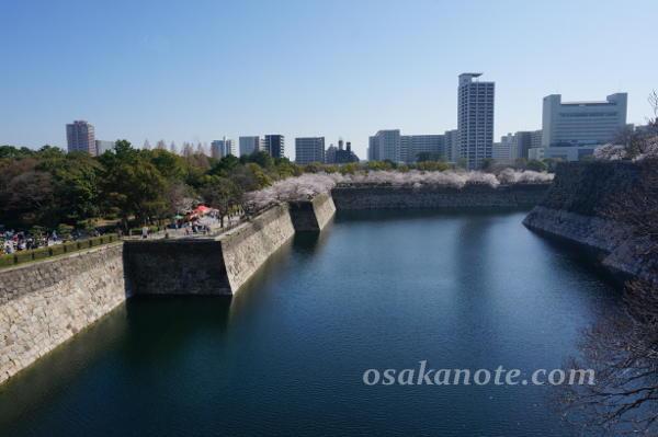 大阪城の桜2018-6