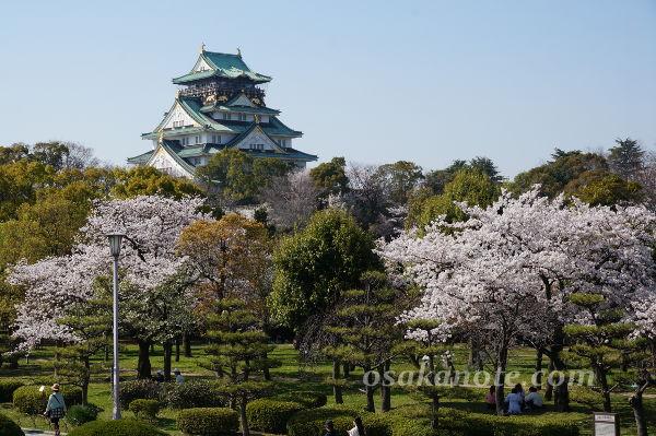 大阪城の桜2018-5