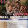 大阪都構想の住民投票が終わりました。